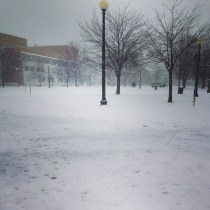 Snow beginning to fall on the Queens College Campus. Photo by Alan Lee