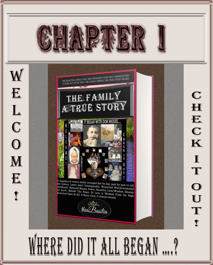 http://www.thia-basilia.com/wp-content/uploads/2018/02/A-Graphic_4_CHAPTER-1_of_The_Family-1.jpg