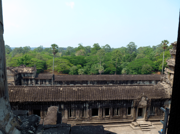 A view of the jungle from the top of Angkor Wat.