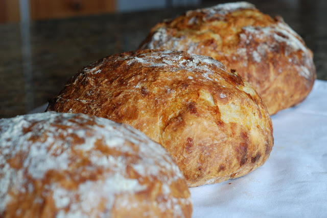 crusty bread 025