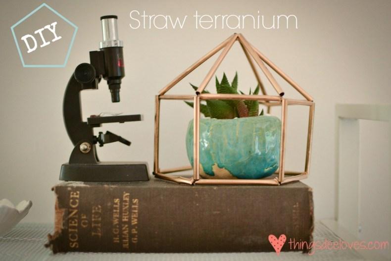straw gems-18