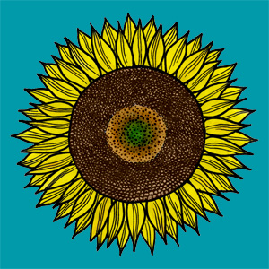 Sunflower-flat