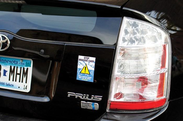 Stop Carp Bumper Sticker