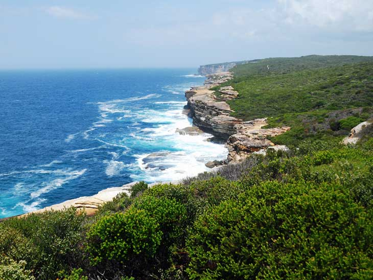 Royal National Park in Sydney.