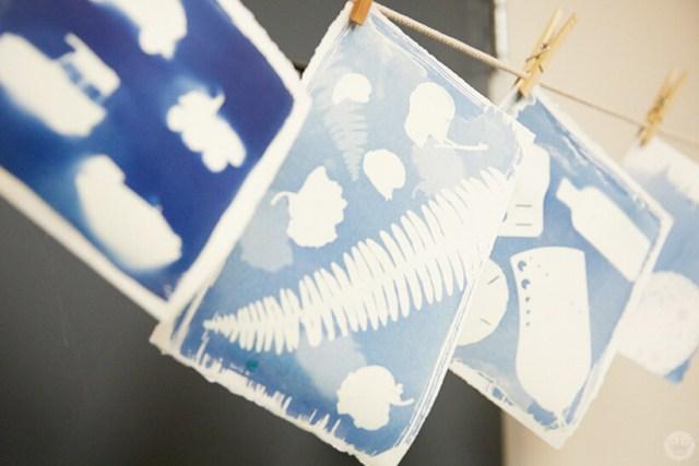Drying cyanotype prints