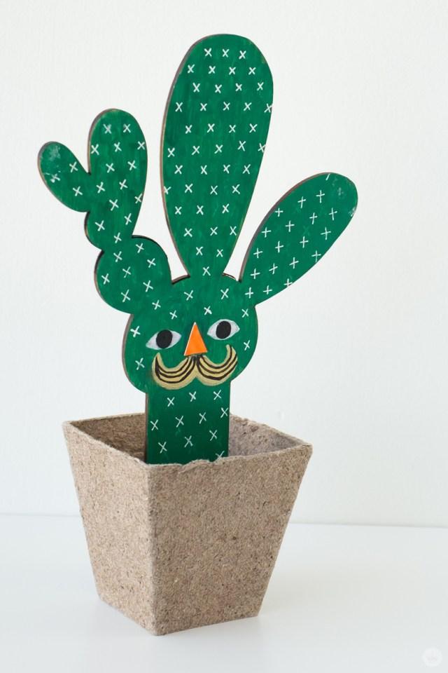 Green mustachioed wooden succulent