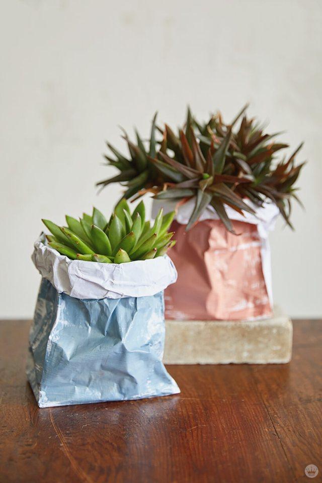 Succulents in DIY Paper Plant Bags | thinkmakeshareblog.com