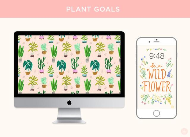 PLANT GOALS: FREE JUNE 2018 DIGITAL WALLPAPERS