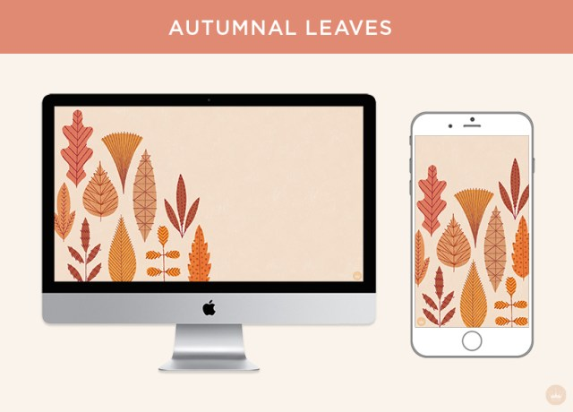 Free November 2018 digital wallpapers: Autumnal leaves