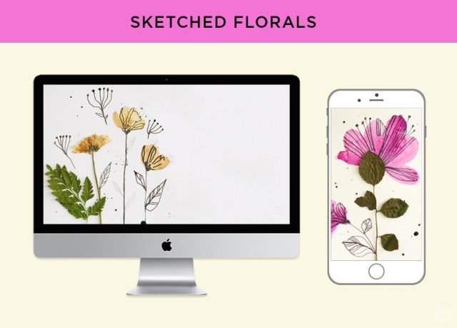 Free digital wallpaper: Pressed flower art from Hallmark. Sketched floral designs for monitors and phones.