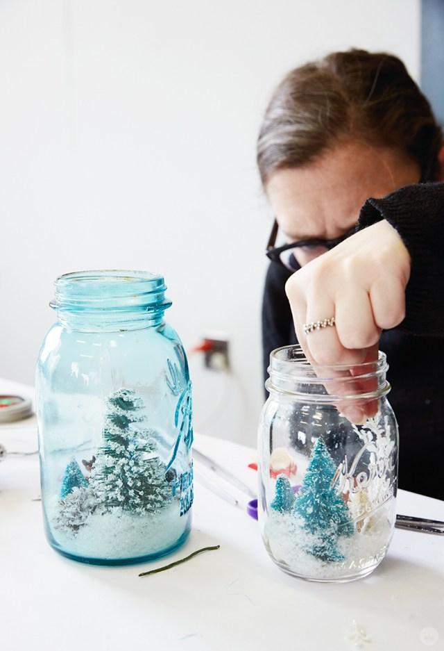 Adding scenery to a winter terrarium