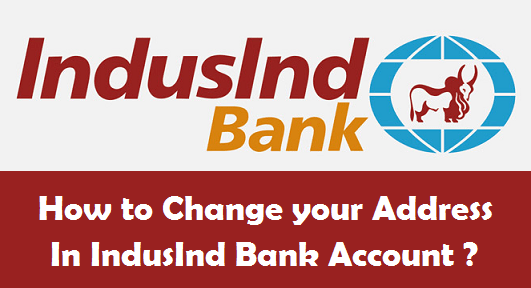 Image result for IndusInd Bank
