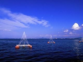 琵琶湖の湖東側