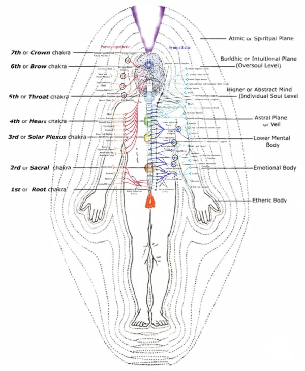 Indian Chakra and Energy Body System