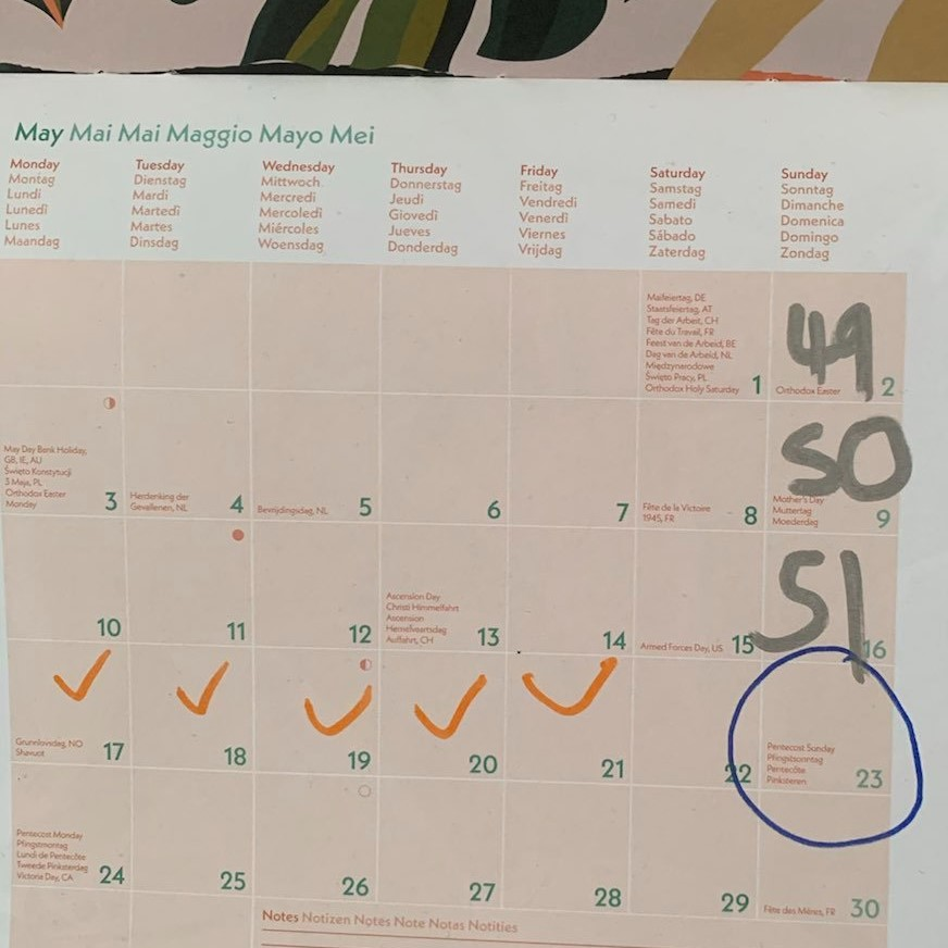 Calendar showing writing and exercise streak