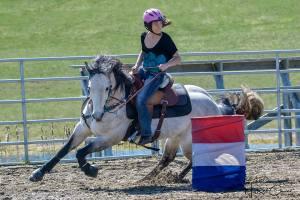 ThinLine Western Pro-Tech Felt Saddle Pad