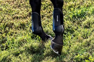 ThinLine Jumping Open Front Air Shock Horse Boot