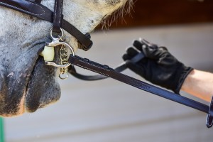 ThinLine English Reins Non Slip