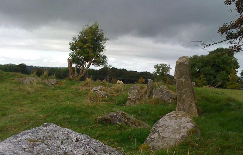 castleruddery stone circle in wicklow