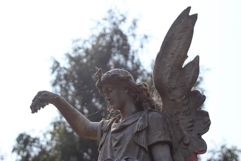 Glanevin Angel