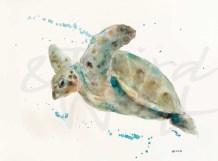 """""""Sea Turtle"""" by Patti Mann"""