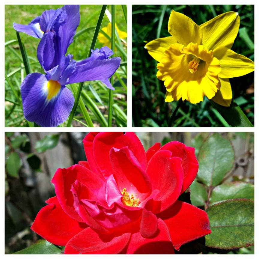 Spring Has Sprung In South Texas