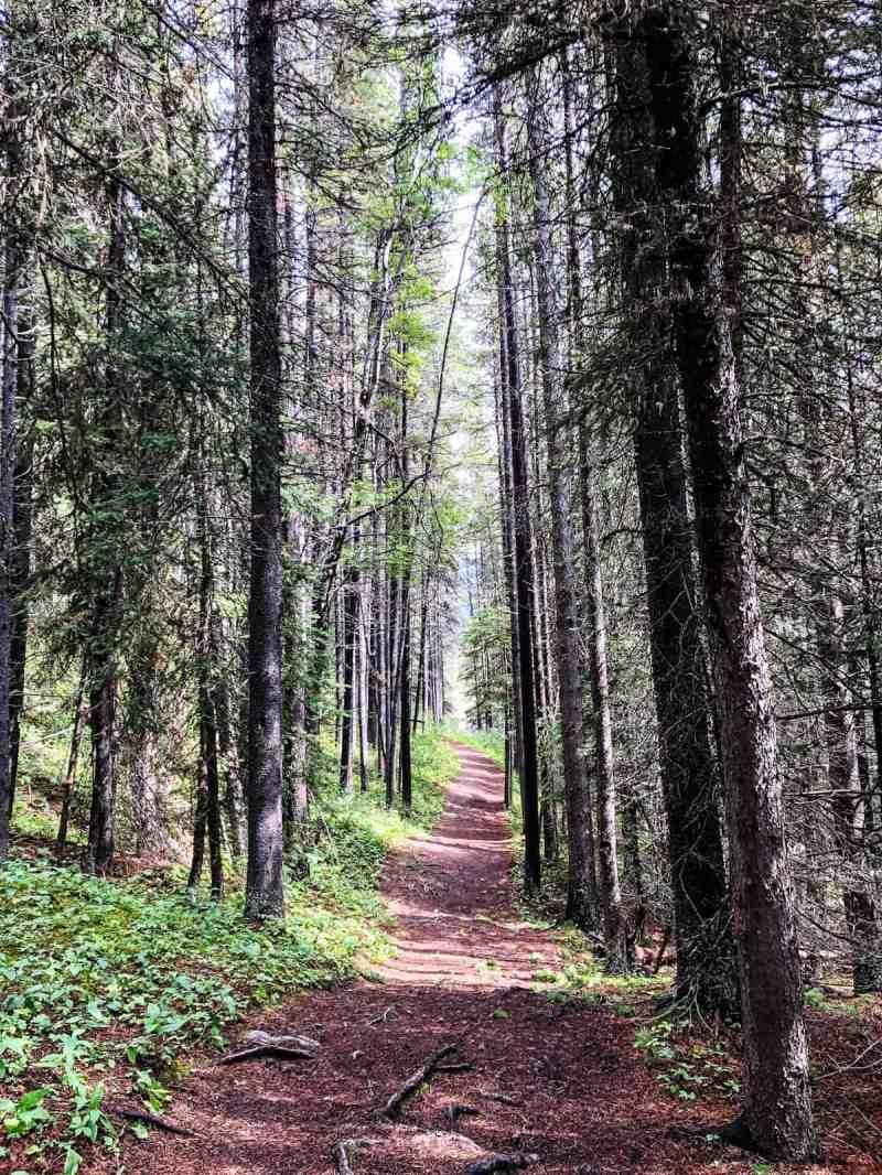 Hiking Upper Kananaskis Lake