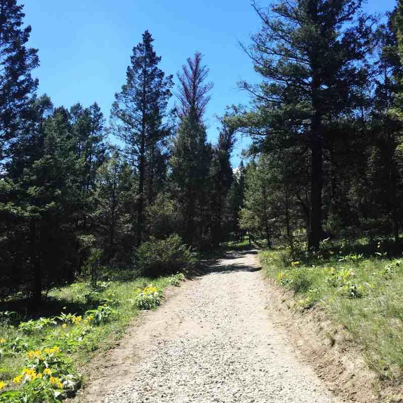 Hike at Fairmont Hot Springs, BC