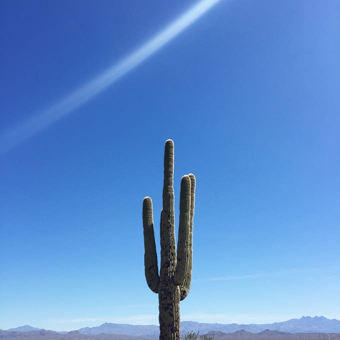 Tips for Hiking with Kids in the Desert