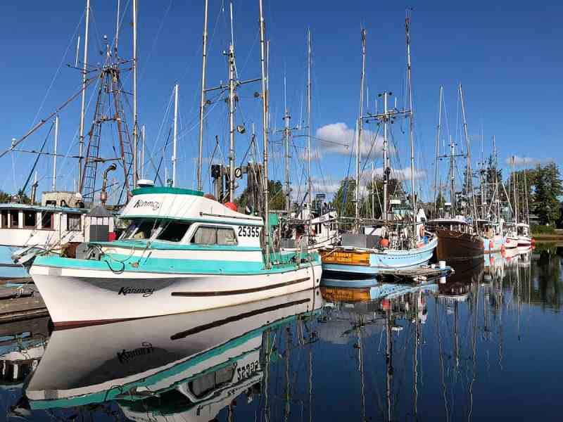 Ucluelet Harbour