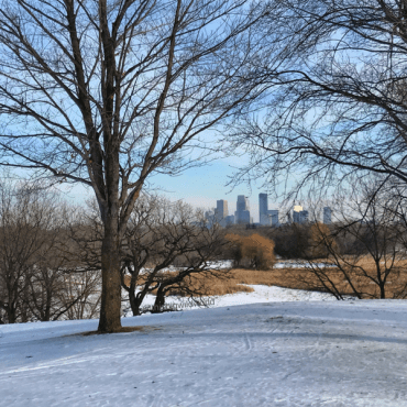 Embrace the Cold: Cross-Country Skiing in Minnesota