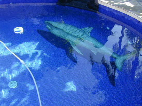 shark-3d-pool