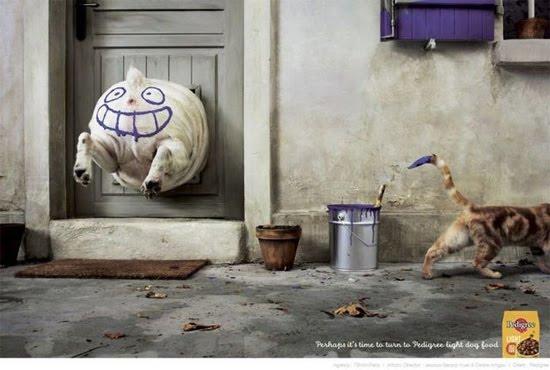 dog-stucked-2