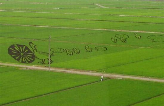 duck-rice-art