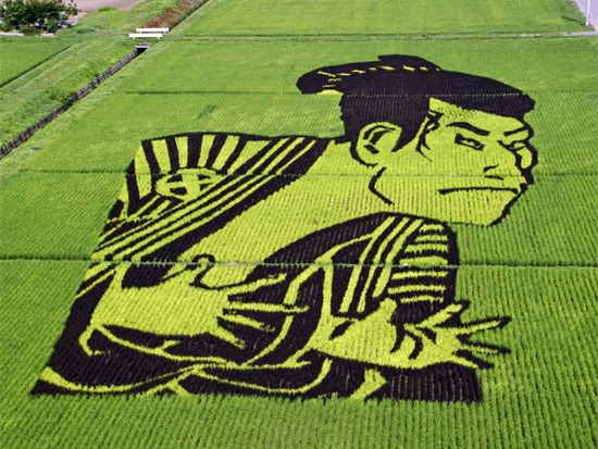 japanese-rice-art