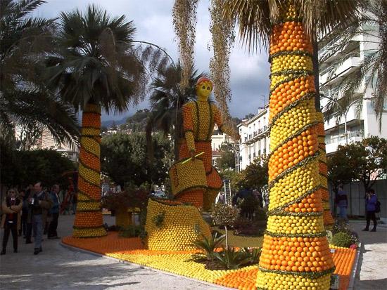 orange-palms