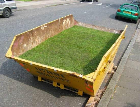 dumpster-grass