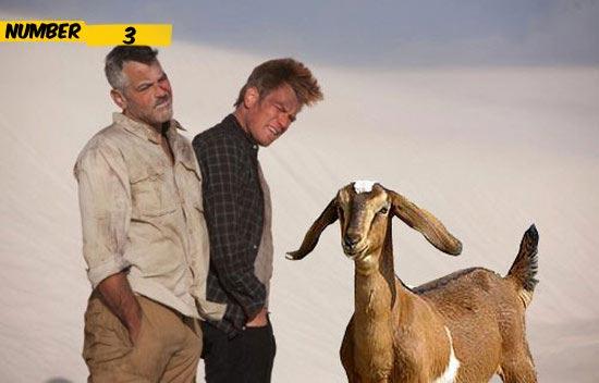 goat-george-clooney