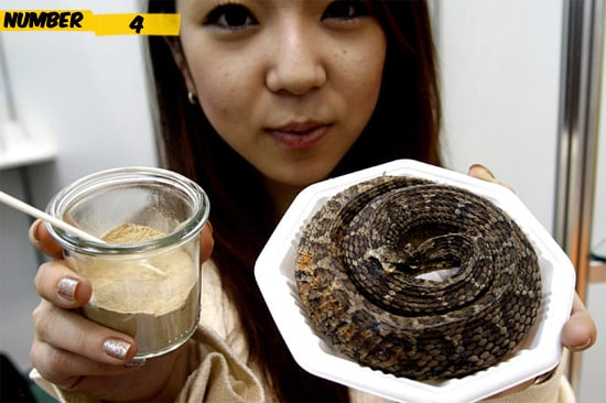 snake-food