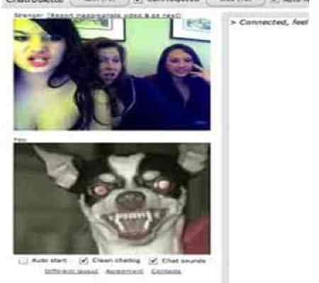 chat roulette screenshot scary dog