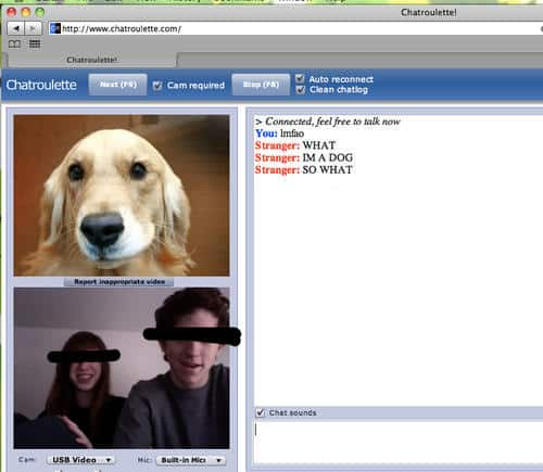 funny chat roulette dog