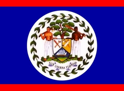 Bizarre Belize Flag