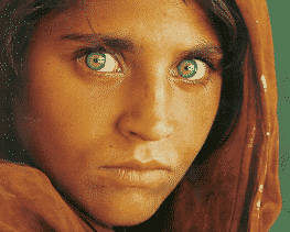 Famous Photos and The Green Eyed Afghan Girl