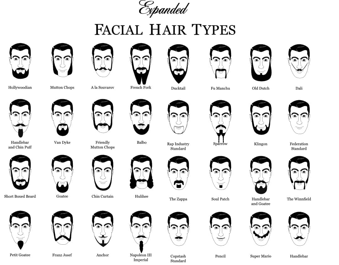 Super The 2014 Guide To Beard Styles And The Hipster Beard Debate Short Hairstyles For Black Women Fulllsitofus