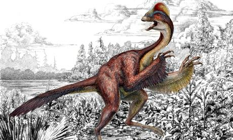 Anzu wyliei ? a bird-like dinosaur nicknamed the 'chicken from hell'