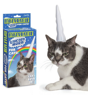The Strangest Pet Accessories