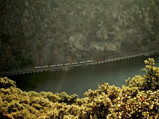 Flickr_-_nmorao_-_Cimento,_Valeira,_2008.09.29_(1)