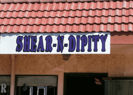 Funniest Hair Salon Names
