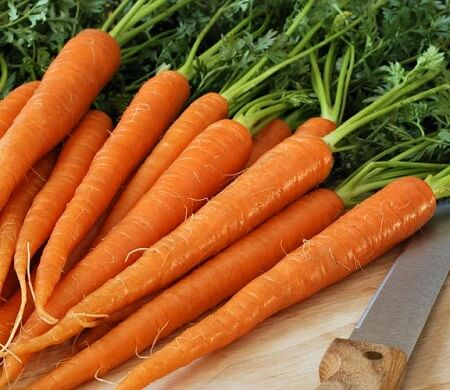 6 Fruits and Vegetables That Looked Way Different Before We Domesticated Them - The Modern Carrots