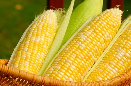 6 Fruits and Vegetables That Looked Way Different Before We Domesticated Them - The North American sweet corn